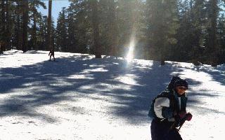 ski9.jpg (23753 bytes)