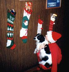 stocking.jpg  (26190 bytes)